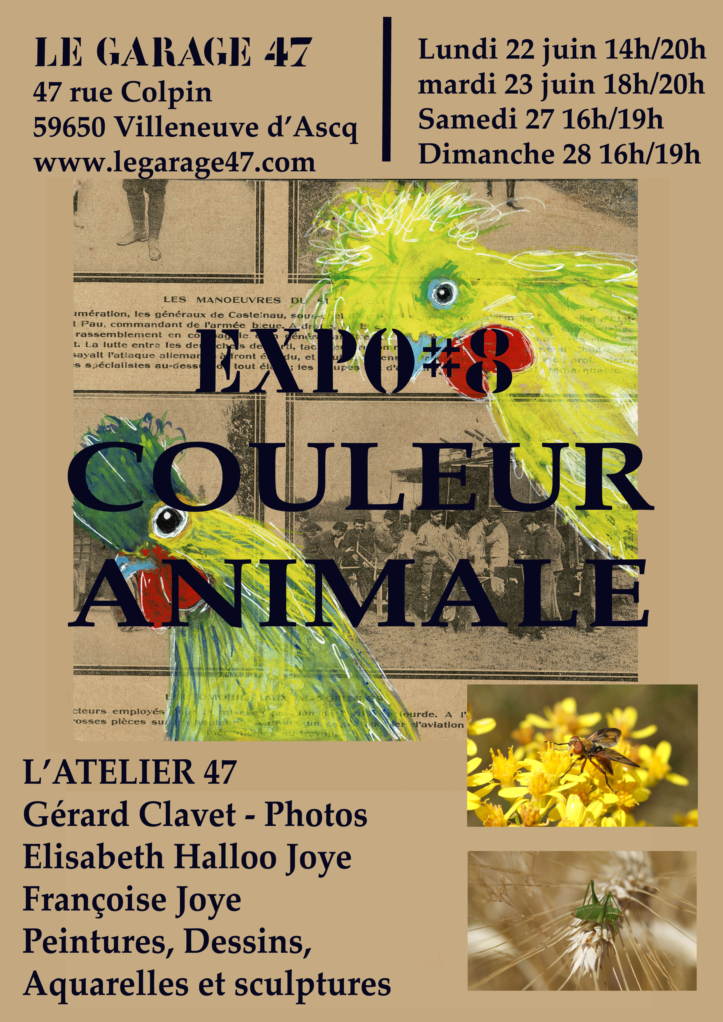 expo affiche couleur animale 2